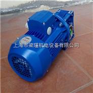 NMRW050-MS7114-紫光减速电机