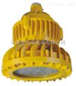 BAX1207固态免维护防爆防腐灯