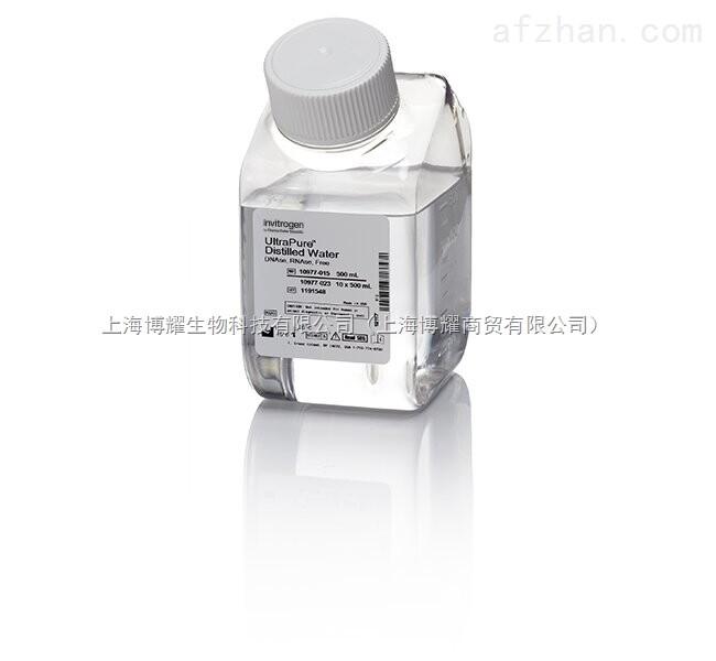 DNase/RNase-Free Distilled Water