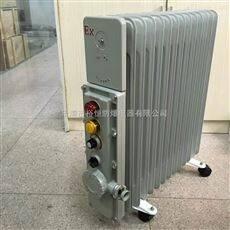BDR51-防爆取暖器电热油汀