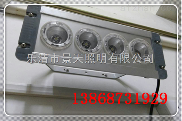 NFC9121(海洋王LED泛光灯