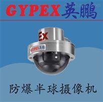 BJK-5QYP河北防爆半球型摄像机,煤矿防爆监控器