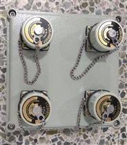 BXX-研磨机防爆插座检修箱挂式明装