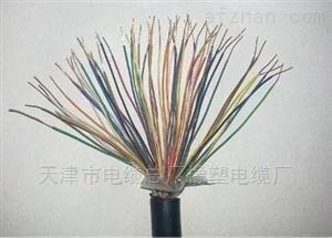 HYAT22大对数通信电缆50对100对200对1000对