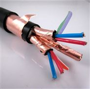 双屏蔽铜带铠装计算机电缆DJYP2VP2