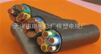 FF46氟塑料绝缘和护套电力电缆