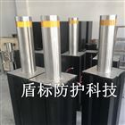 DB-24V机电一体式自动升降柱