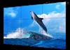 DS-D2046NL-C蘭州海康威視-LCD液晶顯示單元