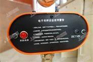 钢铁厂直视电子吊秤 钢材装卸吊称