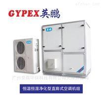 非标定制恒温恒湿直膨式防爆空调