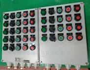 软水泵防爆按钮操作控制箱