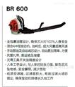斯蒂尔BR600进口风力灭火机  风力吹风机