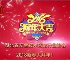 湖北省安全技术防范行业协会2018新春大拜年