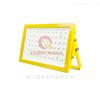 NFC9131NFC9131节能型泛光灯